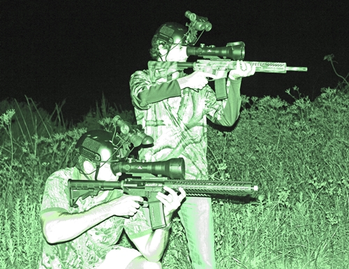 Night Vision Weaponry Used in Feral Pig Hunting